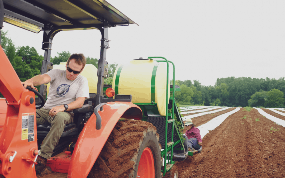 Haygood Farms Year in Review: Growing the Greens