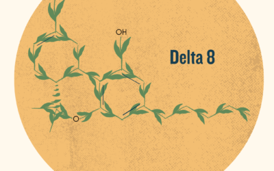 Delta 8- What's All The Hype About?